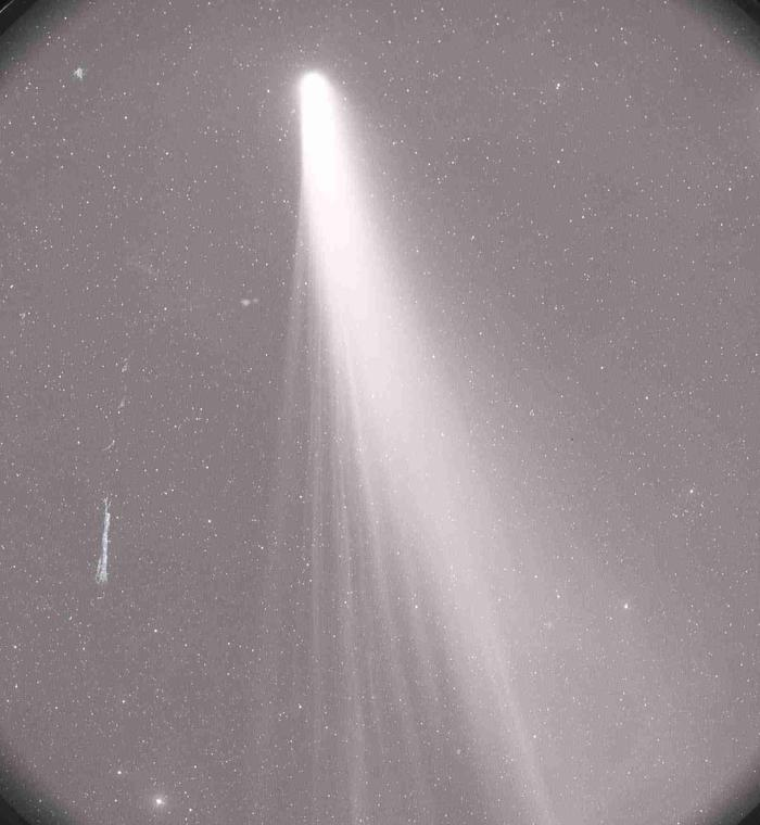 Comète C/1970 Y1 Bennett