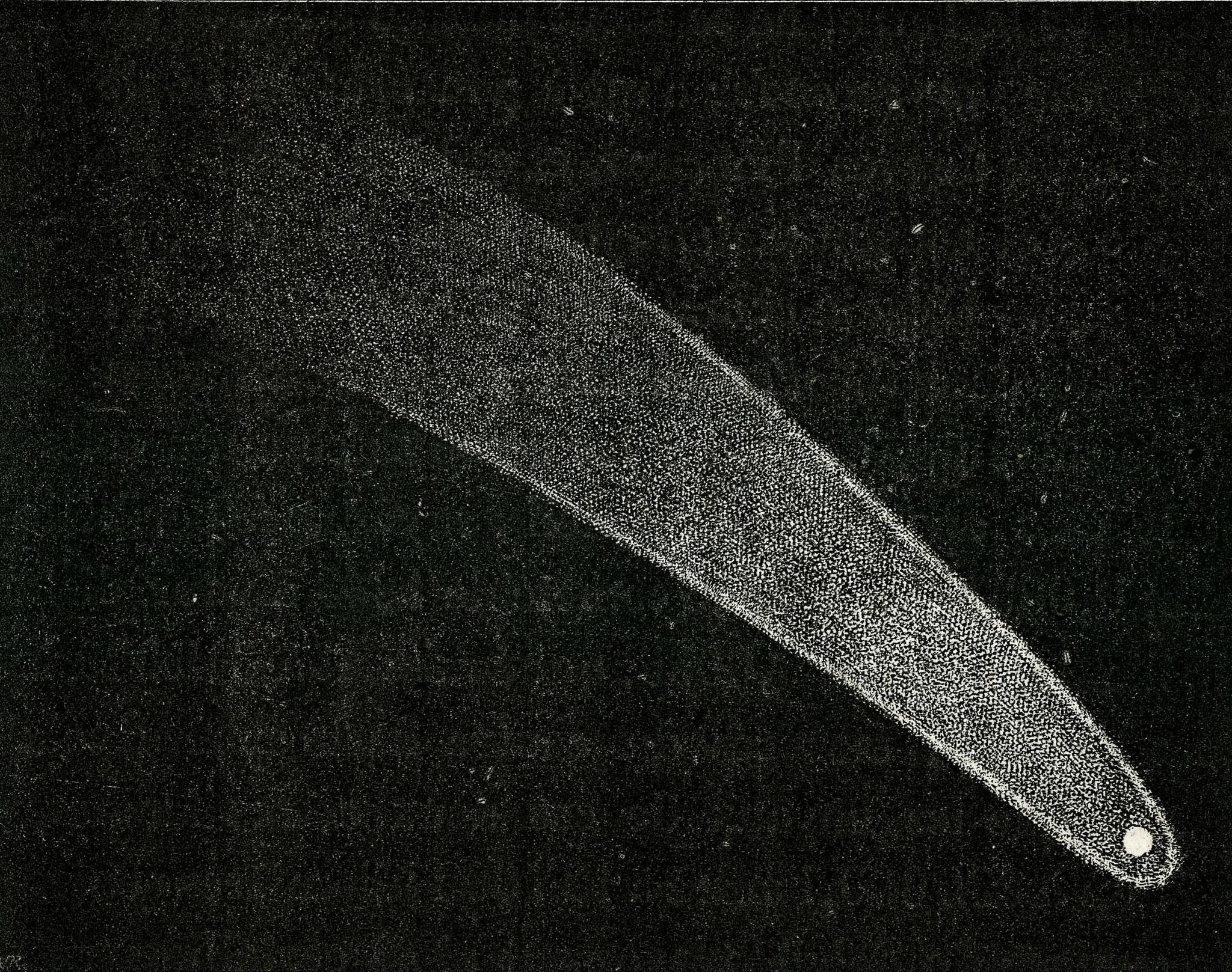 Comète C/1811 F1 Flaugergues - 3